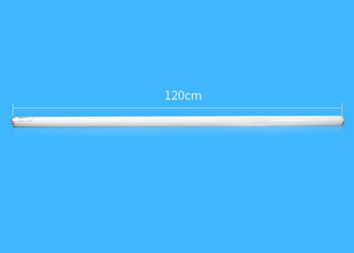 F40T12长度图